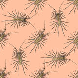 Seamless pattern with Scutigera coleoptrata. millipede. hand-drawn house centipede . Vector. Illustration Stock Image
