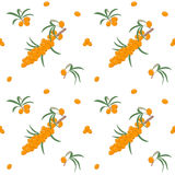 Seamless pattern with sea buckthorn berries on a branch with leaves. Vector illustration. Stock Image