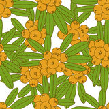 Seamless pattern of sea buckthorn. Royalty Free Stock Photo