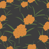 Seamless pattern of sea buckthorn Royalty Free Stock Images