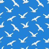 Seamless pattern with sea gulls Royalty Free Stock Images