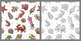 Seamless pattern sea shell, coral, cuttlefish, coral, oyster, crab, shrimp, seaweed, star, fish. Seamless pattern sea shell, coral, cuttlefish, coral, oyster Stock Image