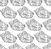 Seamless pattern sea shells Cypraecassis is a genus of medium-sized to large sea snails, marine gastropod mollusks in the family. Cassidae. Sketch black contour royalty free illustration
