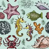 Seamless pattern with sea shells, fish, corals and turtle. Vector illustration Stock Photo