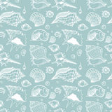 Seamless pattern of Sea shells Royalty Free Stock Image