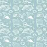 Seamless pattern of Sea shells Royalty Free Stock Image