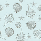 Seamless pattern of sea shells on a light turquoise background Stock Photography
