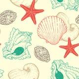 Seamless pattern with sea shells Stock Image