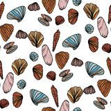 Seamless pattern with sea shells. Royalty Free Stock Image