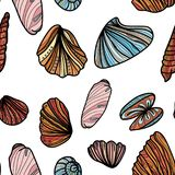 Seamless pattern with sea shells. Stock Images