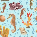 Seamless pattern with seahorse shells, corals. Vector illustration. Royalty Free Stock Photos