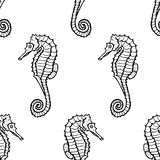 Seamless pattern from seahorse silhouette. hippocampus Royalty Free Stock Images