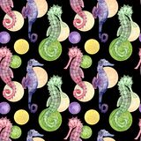 Seamless pattern with seahorse stock illustration