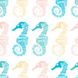 Seamless pattern of seahorses Stock Images