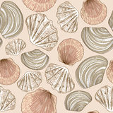 Seamless pattern of seashells Royalty Free Stock Photo