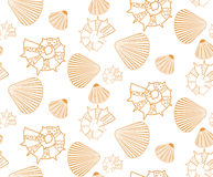 Seamless pattern from seashells Royalty Free Stock Images