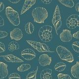 Seamless pattern of seashells. Hand drawn vector illustration. Marine background royalty free illustration