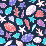 Seamless pattern of seashells. Stock Photos