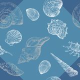 Seamless pattern with seashells. Seamless pattern with white and grey seashells on blue background Stock Images