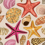Seamless pattern of seashells and starfish Royalty Free Stock Photos