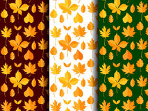 Seamless pattern set of autumn leaves vector.  Stock Photos