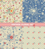 Seamless pattern set.Flowers,branches,berries in retro style Stock Image