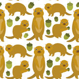 Seamless pattern Set of funny Gopher ground squirrel isolated with acorn on white background. Vector Royalty Free Stock Image