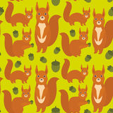 Seamless pattern Set of funny red squirrels with Gopher ground squirrel fluffy tail with acorn on green background. Vector Stock Image