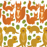 Seamless pattern Set of funny red squirrels with Gopher ground squirrel fluffy tail with acorn isolated on white background. Vecto Royalty Free Stock Photo