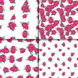 Seamless pattern set with pink peonies Royalty Free Stock Image