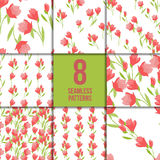 Seamless pattern set with tulips Royalty Free Stock Image