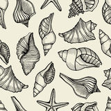 Seamless pattern with shells Royalty Free Stock Photography
