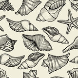 Seamless pattern with shells Stock Image