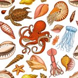 Seamless pattern shells, seaweed and octopus and squid. sea life and creature. engraved hand drawn in old sketch. Vintage style. nautical or marine, monster or Stock Photography