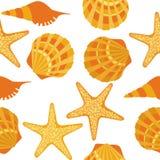 Seamless pattern, shells, starfish Royalty Free Stock Images