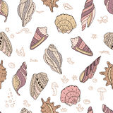 Seamless pattern with shells on white Stock Photos