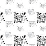 Seamless pattern of siberian eagle owl background Stock Image