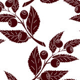 Seamless pattern of silhouette of blueberry branch. With berries Royalty Free Stock Photography