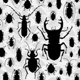 Seamless pattern with silhouette of bugs. Contrast  drawing of small beetles. Insect on the background with gray leaves. Cartoon bug wallpaper Stock Photos