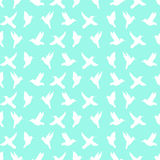 Seamless pattern of silhouette of colibri Stock Photography