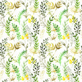 Seamless pattern with silhouettes of flowers and. Grass, drawing by watercolor Stock Photography