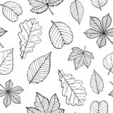 Seamless pattern of silhouettes and outline leaves vector illustration