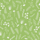 Seamless pattern with silhouettes of various plant Stock Images