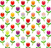 Seamless pattern in simple cartoon style with motley tulips. Vector illustration Stock Photos