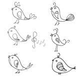 Seamless pattern. Singing birds Stock Image