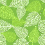 Seamless pattern with skeletons of leaves Royalty Free Stock Photo