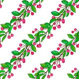 Seamless pattern of sketch cherry with watercolor royalty free illustration