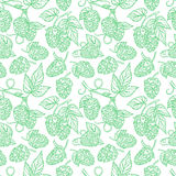 Seamless pattern of sketch hops Stock Image