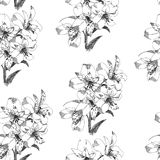Seamless pattern with sketch Lily flowers, floral decor black and white. Illustration. Seamless pattern with sketch Lily flowers, floral decor black and white vector illustration