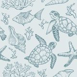 Seamless pattern with sketch of sea shells, fish, corals and turtle. Hand Drawn vector. Illustration Royalty Free Stock Photo